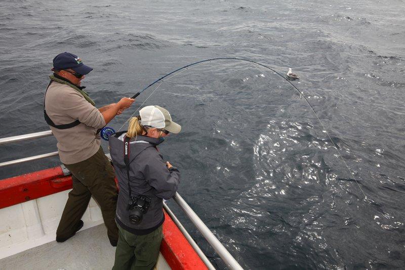 Markus drilt een grote haai.