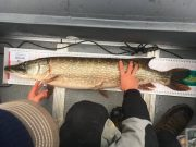 Het was uiteindelijk een snoek van 105 cm lang die de winst opleverde. De vis is ook goed voor de Vangst van de Week.