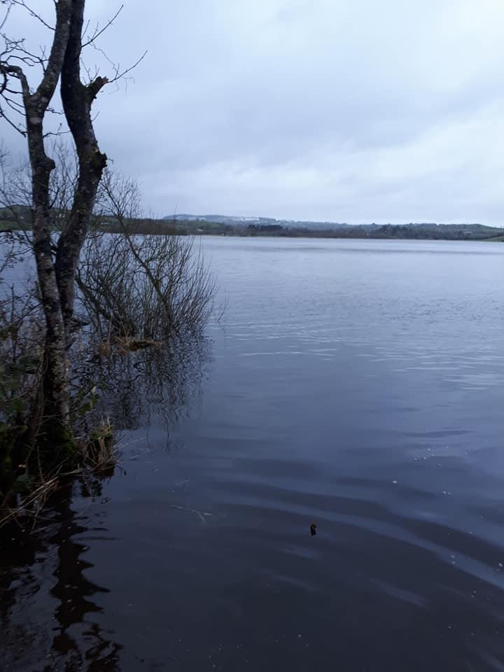Lough Muckno