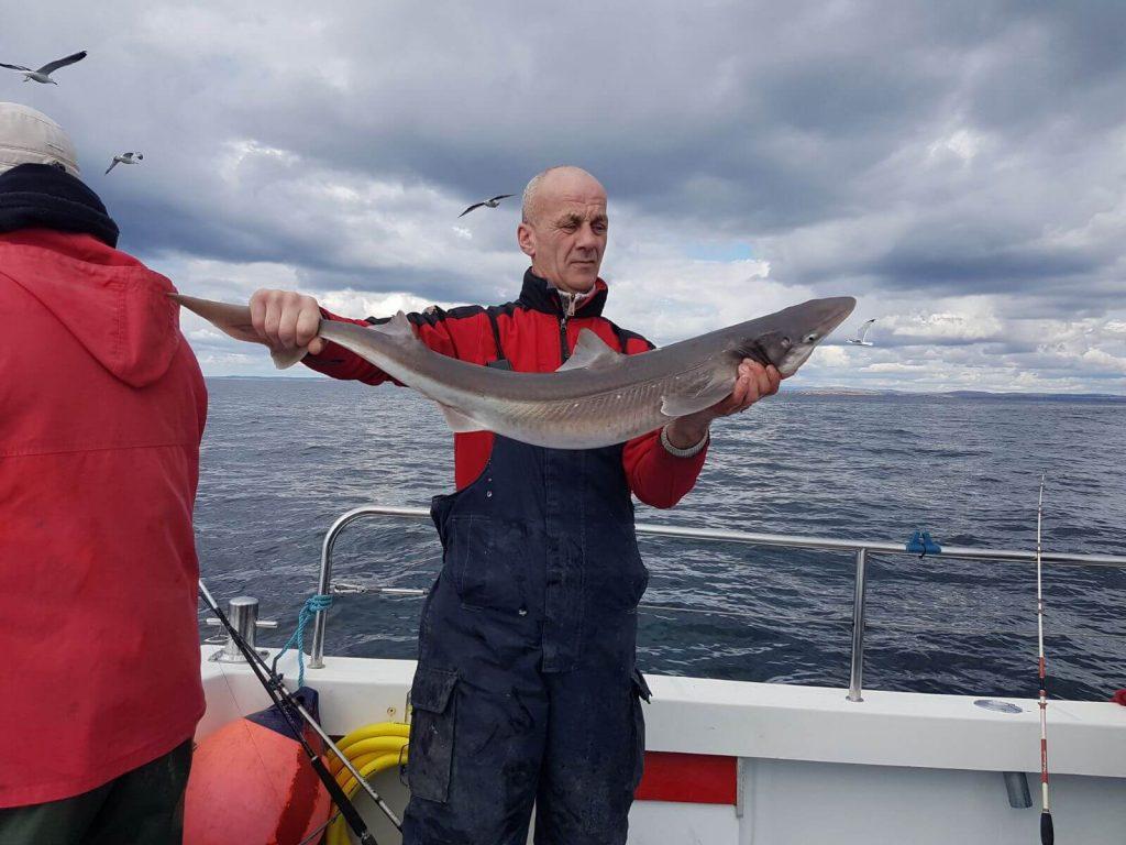Alan Kelly met een specimen doornhaai uit de Galway Bay.