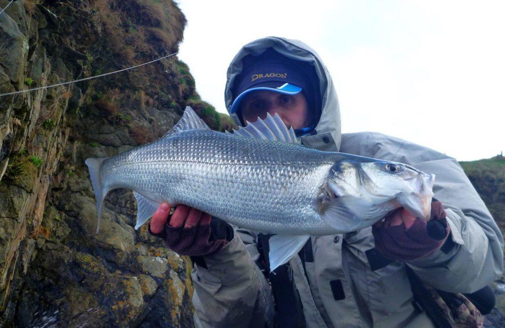 Een zeebaars van 68 cm, een prima start van het seizoen – CPRsavesfish.